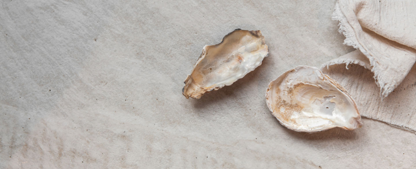 Nahaufnahme zweier Muscheln und einem Leinentuch auf einer Keramikarbeitsplatte