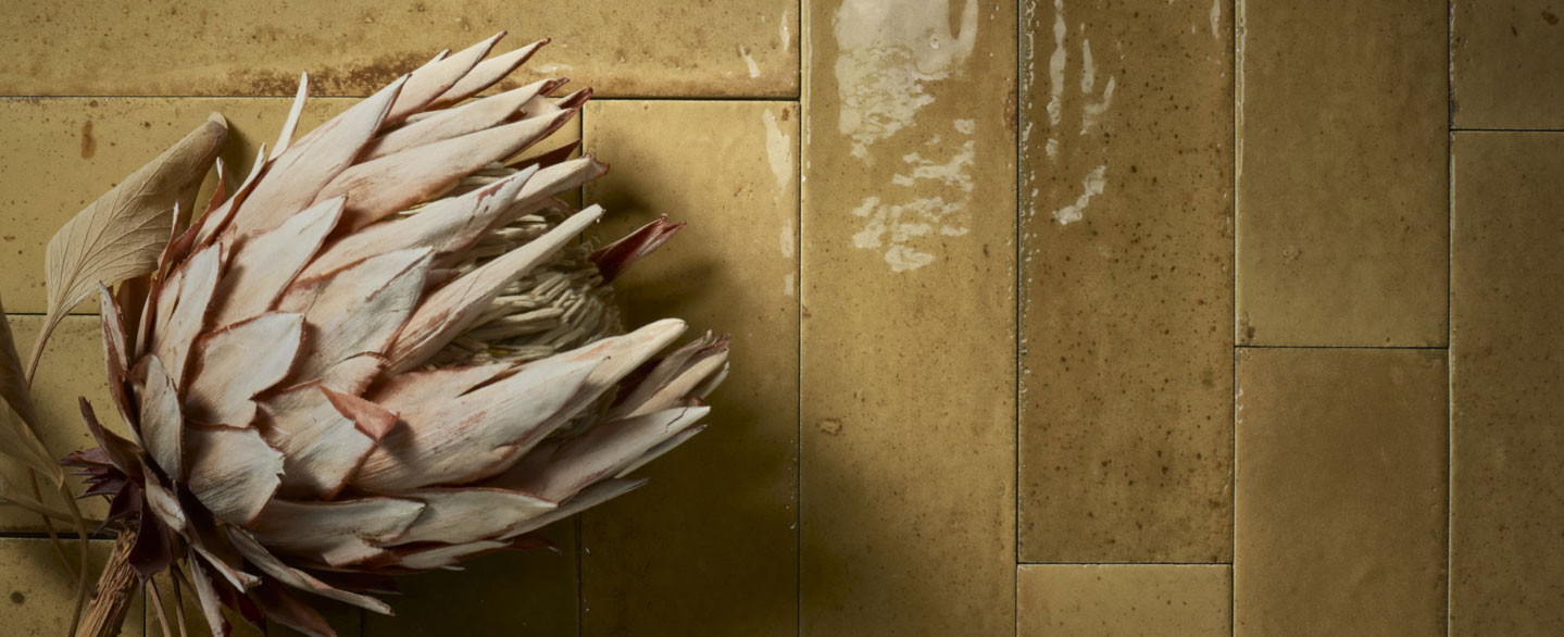 Trockenblume auf länglichen senfgelben Fliesen