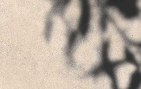 Detailansicht einer Terrassenplatte in beiger Steinoptik mit einem Schatten eines Baumes